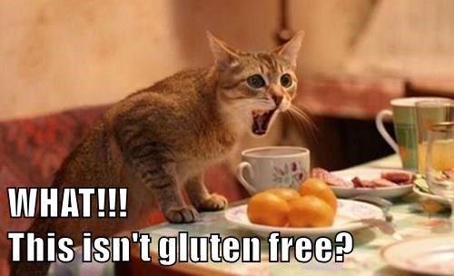 WHAT!!!                                            This isn't gluten free?