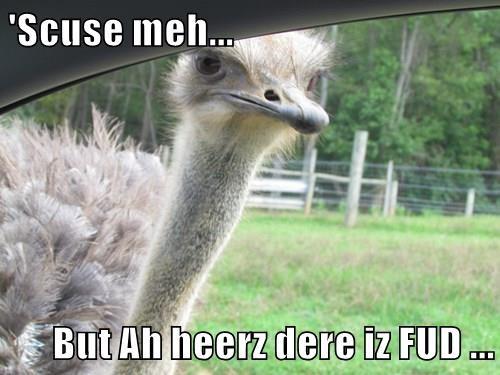 'Scuse meh...  But Ah heerz dere iz FUD ...