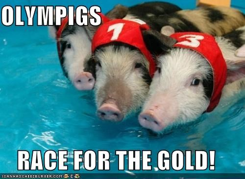 OLYMPIGS  RACE FOR THE GOLD!