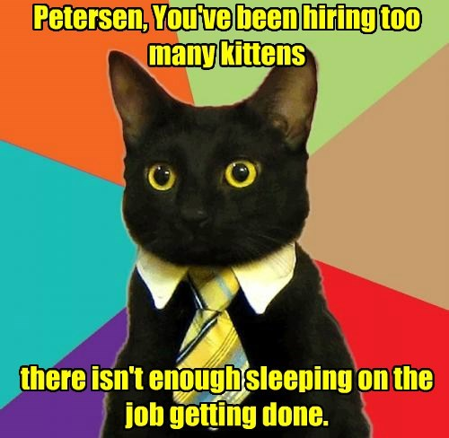 Petersen, You've been hiring too many kittens          there isn't enough sleeping on the job getting done.