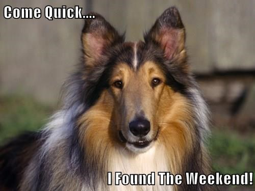 Come Quick....  I Found The Weekend!