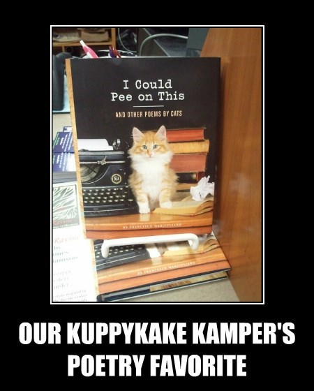 OUR KUPPYKAKE KAMPER'S POETRY FAVORITE
