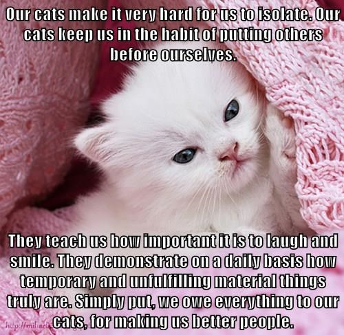 Our cats make it very hard for us to isolate. Our cats keep us in the habit of putting others before ourselves.  They teach us how important it is to laugh and smile. They demonstrate on a daily basis how temporary and unfulfilling material things truly a