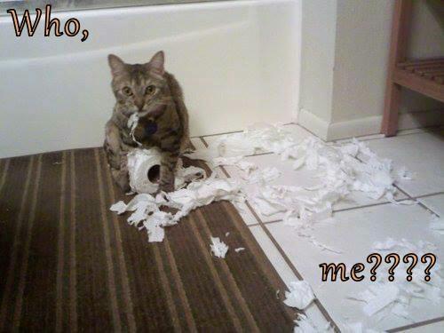 Who,  me????