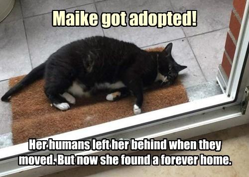 Maike Got Adopted!