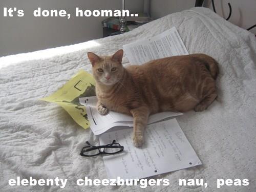It's  done, hooman..  elebenty  cheezburgers  nau,  peas