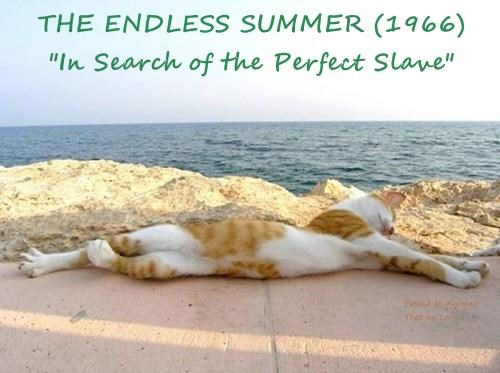 """THE ENDLESS SUMMER (1966)            """"In Search of the Perfect Slave"""""""