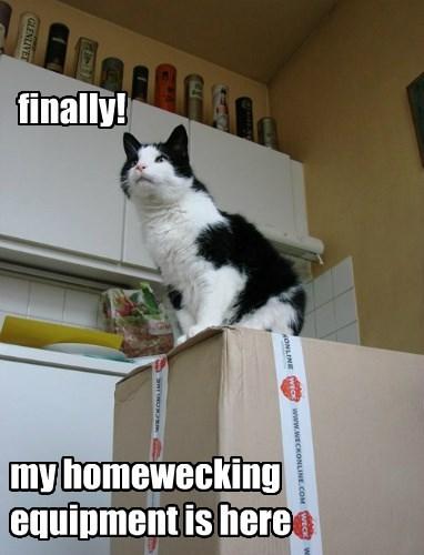 at last i can call myself a homewecker