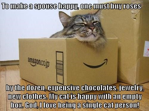 To make a spouse happy, one must buy roses   by the dozen, expensive chocolates, jewelry, new clothes. My cat is happy with an empty box. God, I love being a single cat person!