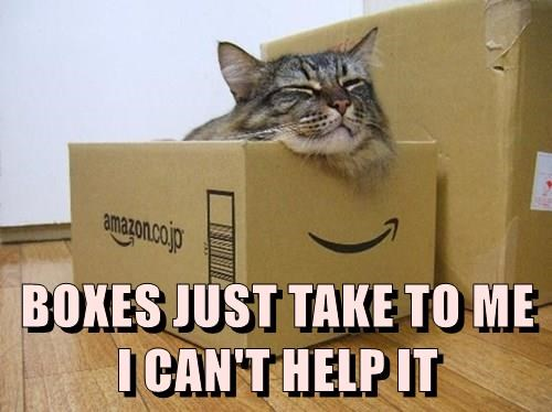 BOXES JUST TAKE TO ME I CAN'T HELP IT