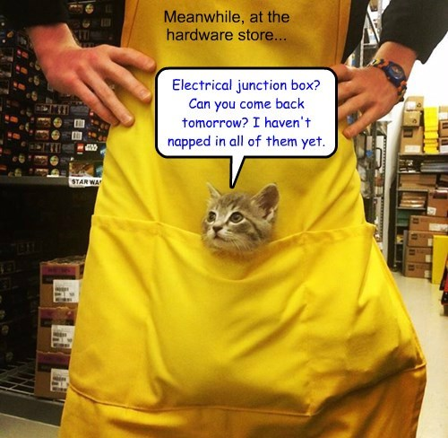 Meanwhile, at the hardware store