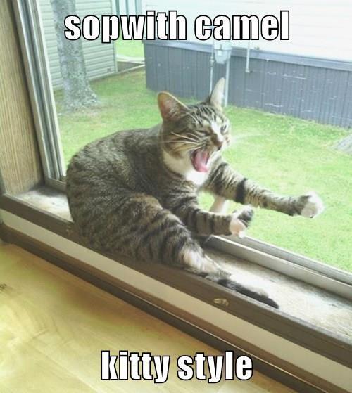 sopwith camel  kitty style