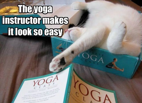 The yoga instructor makes it look so easy