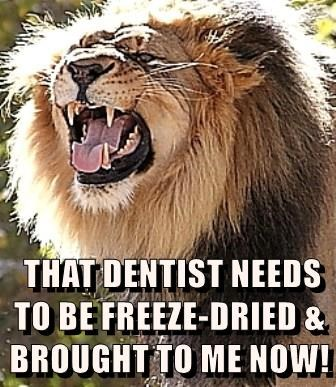 THAT DENTIST NEEDS TO BE FREEZE-DRIED & BROUGHT TO ME NOW!
