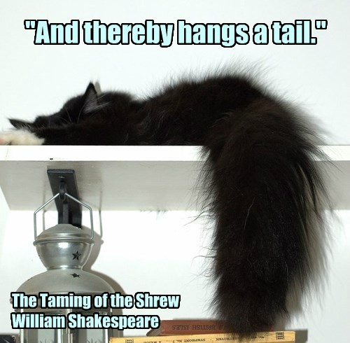"""And thereby hangs a tail."""
