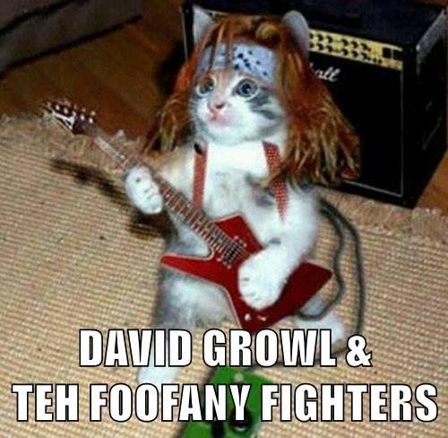 DAVID GROWL &                TEH FOOFANY FIGHTERS