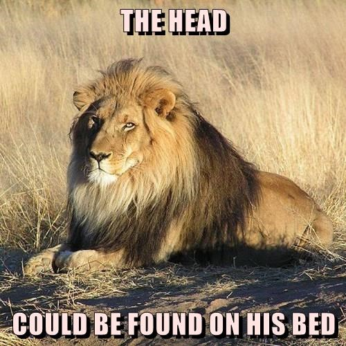 THE HEAD   COULD BE FOUND ON HIS BED