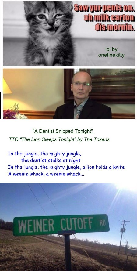 """A Dentist Snipped Tonight"" (TTO ""The Lion Sleeps Tonight"" by The Tokens)"