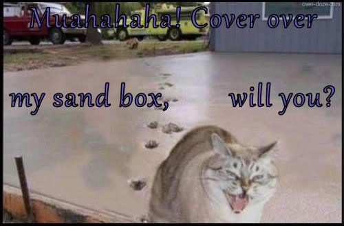 Muahahaha! Cover over   my sand box,        will you?
