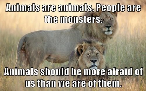 Animals are animals. People are the monsters.  Animals should be more afraid of us than we are of them.