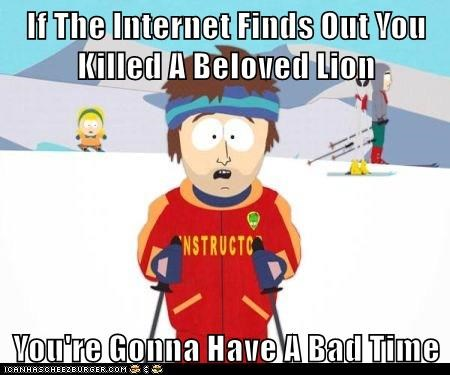 If The Internet Finds Out You Killed A Beloved Lion  You're Gonna Have A Bad Time