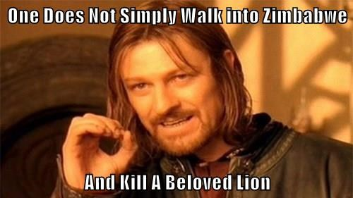 One Does Not Simply Walk into Zimbabwe  And Kill A Beloved Lion
