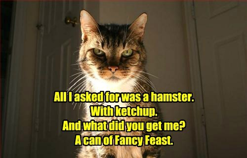 All I asked for was a hamster.  With ketchup.  And what did you get me?  A can of Fancy Feast.