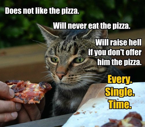 Cat Rule #42: Right of First Refusal.