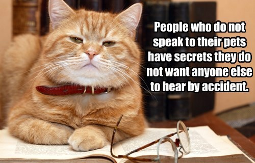 People who do not speak to their pets have secrets they do not want anyone else to hear by accident.
