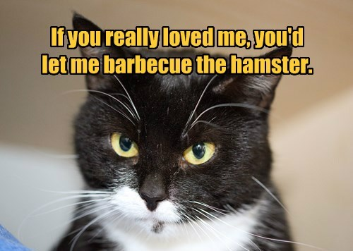 If you really loved me, you'd let me barbecue the hamster.