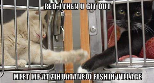 RED, WHEN U GIT OUT   MEET ME AT ZIHUATANEJO FISHIN VILLAGE