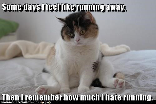 Some days I feel like running away.  Then I remember how much I hate running.