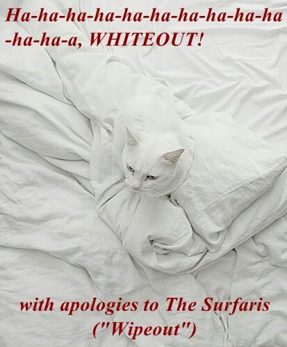 """Ha-ha-ha-ha-ha-ha-ha-ha-ha-ha-ha-ha-a, WHITEOUT!  with apologies to The Surfaris (""""Wipeout"""")"""
