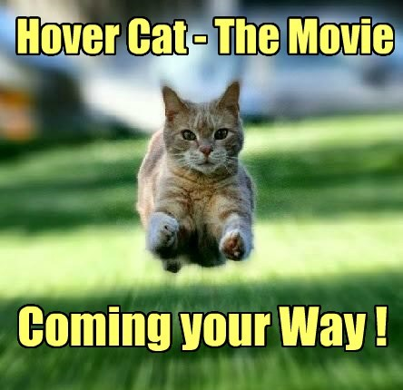 Hover Cat - The Movie