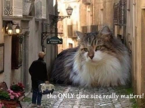 the ONLY time size really matters!