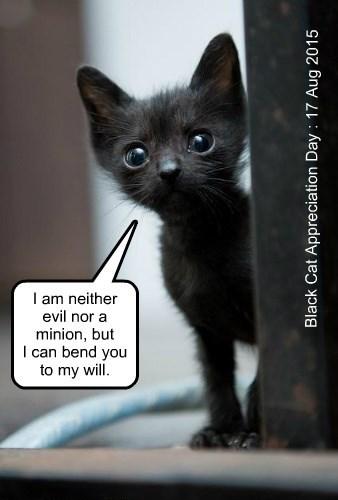 minion,neither,kitten,evil,will,bend,caption