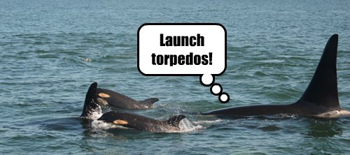 Launch torpedos!