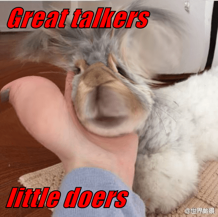 Great talkers  little doers