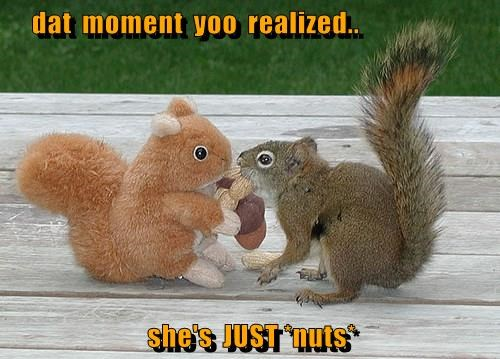 dat  moment  yoo  realized..  she's  JUST *nuts*