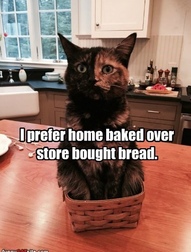 I prefer home baked over store bought bread.