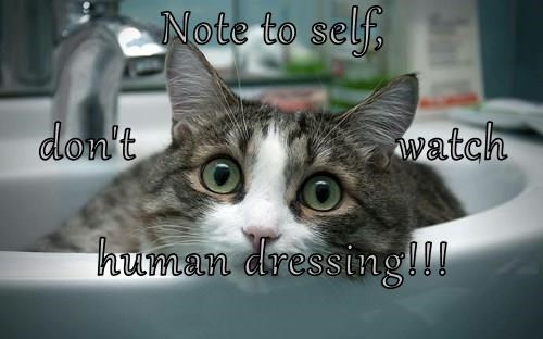 Note to self, don't                      watch human dressing!!!