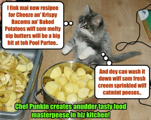 Kamp 2015: Chef Punkin haz an eggsiting new resipee he's making for teh Kampers an' Kownsellors!