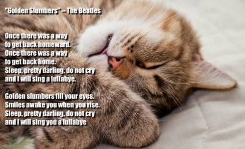 """""""Golden Slumbers"""" -- The Beatles"""