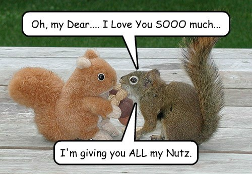 Nutty in Love