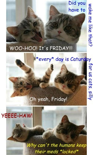 WOO-HOO! It's FRIDAY!!!