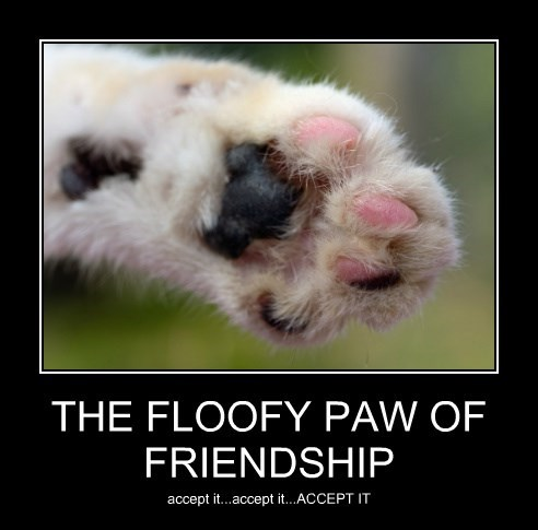 THE FLOOFY PAW OF FRIENDSHIP