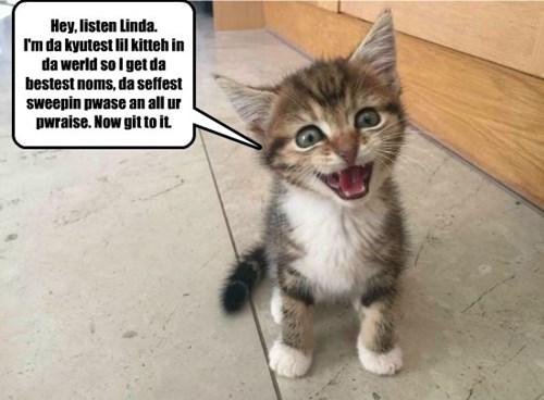Gosh, win dey lern how to talk!