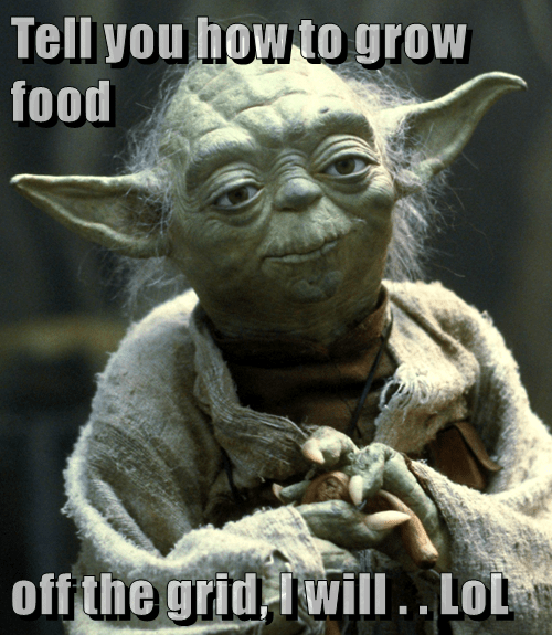 Tell you how to grow food   off the grid, I will . . LoL