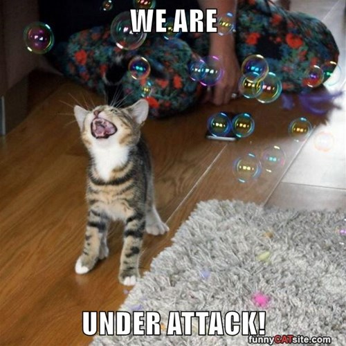 WE ARE   UNDER ATTACK!