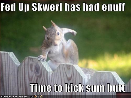 Fed Up Skwerl has had enuff  Time to kick sum butt